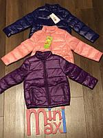 Куртка детская весенняя  унисекс без капюшона