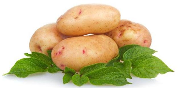 Высокоэффективный системный гербицид Купол, 100 г. Для уничтожения широкого спектра сорняков при выращивании картофеля