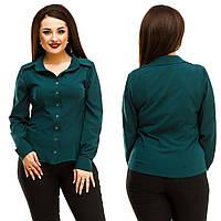 Блуза батал,  евро-бенгалин Цвета: пудра, белый, темно-зеленый, красный, темно-синий, трава, голубой жа№5065