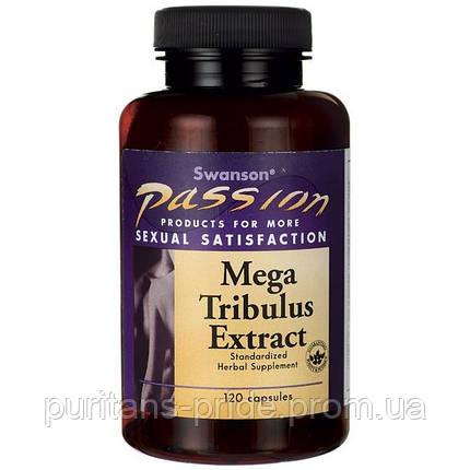 Трибулус Якорцы экстракт, 250 мг 120 капсул, Mega Tribulus Extract, Swanson, фото 2