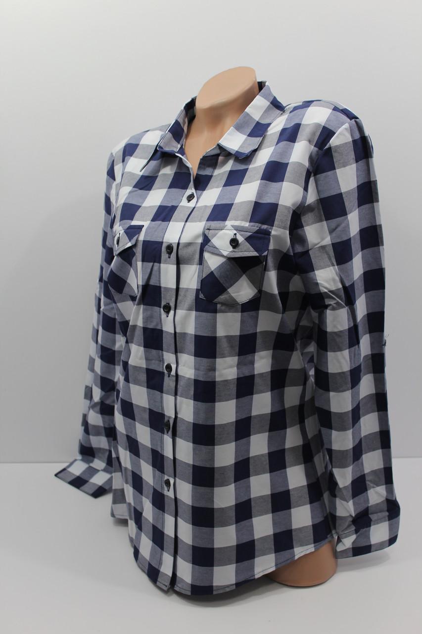 Женские рубашки в клетку полубатал оптом VSA белый+синий