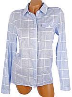 Тонкая хлопковая рубашка (в расцветках)