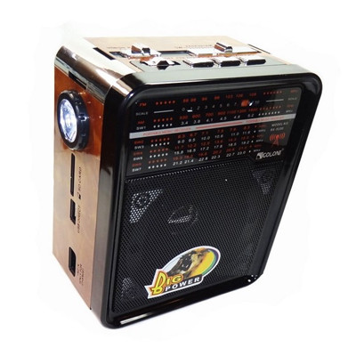 Радиоприемник от сети с USB, SD, аккумулятором и со светодиодным фонариком 16см*12.5см*8.5см GOLON RX-9100