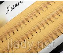 Ресницы Nesura Eyelash 4d (75 пучков)