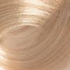 PALCO Крем-краска для волос 10.0 блонд платиновый, 100 мл.