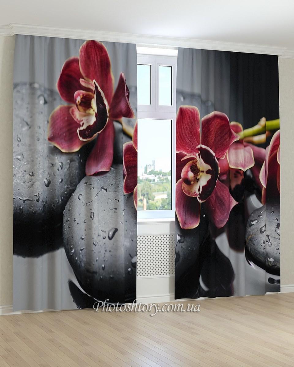 Фотошторы орхидея на камнях