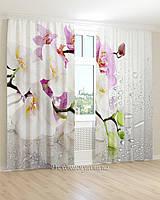 Фотошторы капли и белая орхидея