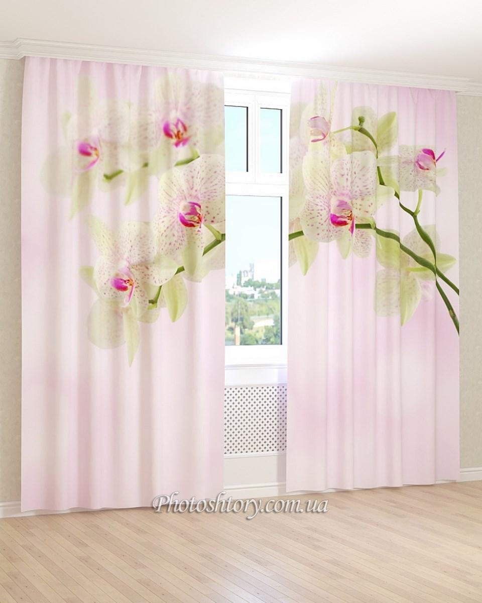 Фотошторы орхідея з рожевими плямами