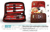 Маникюрный набор SPL 77101AE Красный лаковый темный