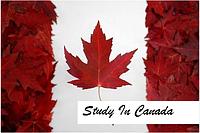 Иммиграция через обучение в колледже Канады