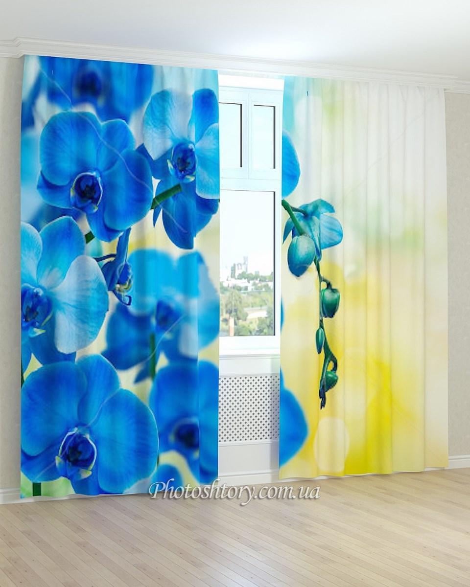 Фотошторы светло-синяя орхидея 3д