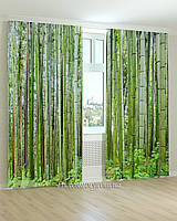 Фотошторы бамбуковый лес 3d