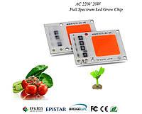 Светодиодный чип фито  для растений  LED 30вт 230в Full Spectrum