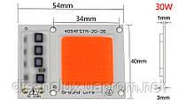 Светодиодный чип фито  для растений  LED 30вт 230в Full Spectrum, фото 3