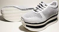 Кроссовки на высокой подошве Evromoda, фото 1