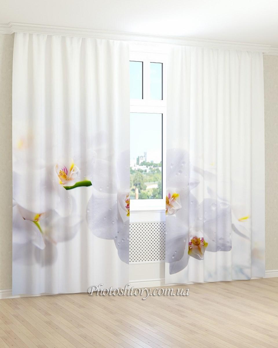 Фотошторы 3D орхидея и капли воды
