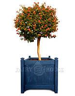 """Горшок для цветов из дерева """"Версаль"""""""