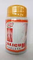 Природный Кальций из раковин, обработанного корала и яичной скорлупы, Calicum (100tab)