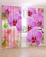Фотошторы 3д фиолетовая орхидея