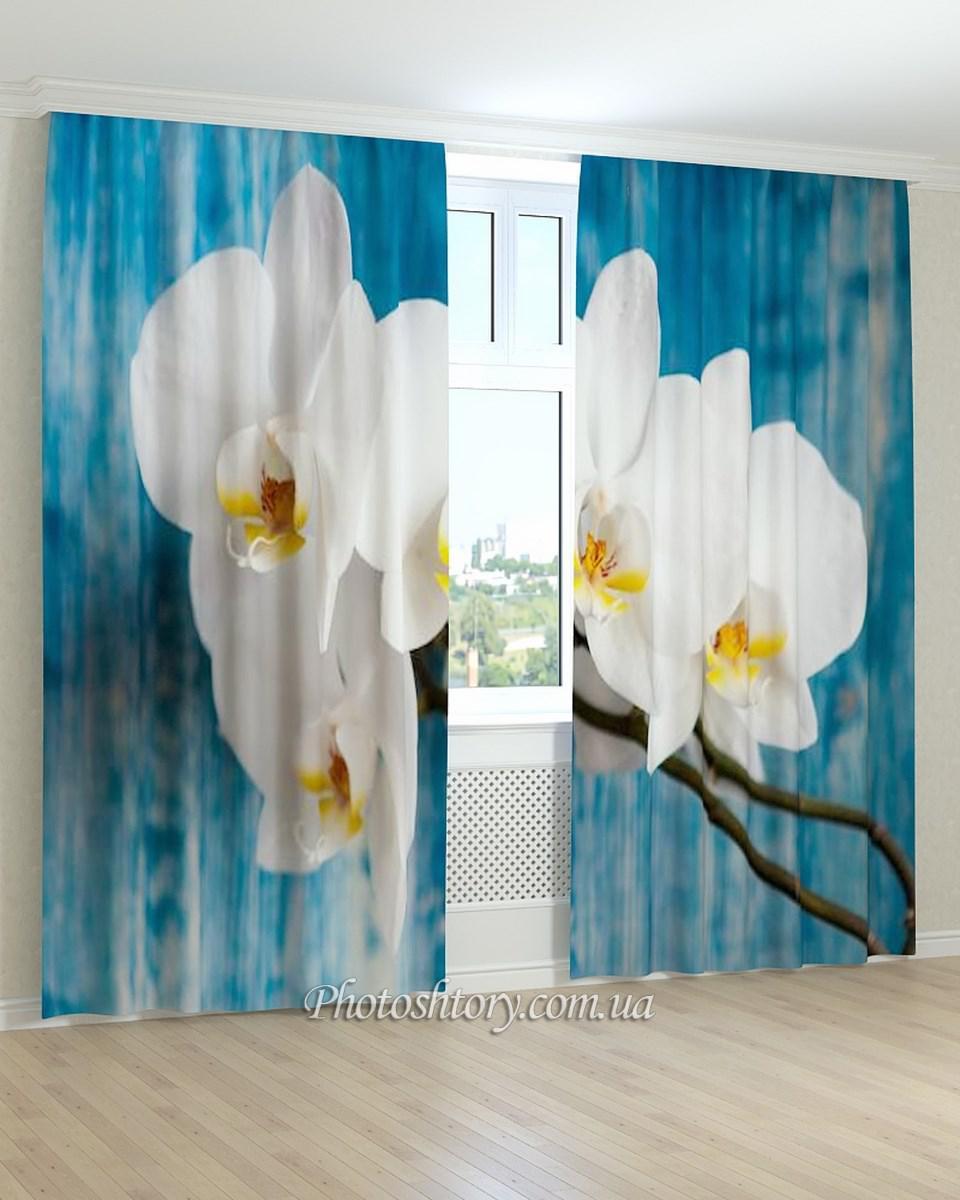 Фотошторы белая ветка орхидеи 3D