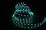 Светодиодная лента B-LED 5050-60 IP20 Зеленый
