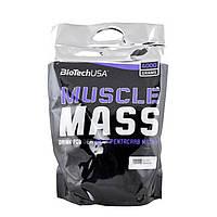 Гейнер BioTech Biotech Muscle Mass (4 kg)