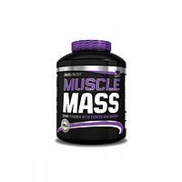 Гейнер BioTech Biotech Muscle Mass (2,27 kg)