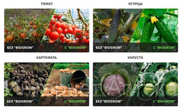 BioGrow Plus