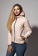 Пудровая молодежная куртка с капюшоном
