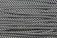 Шнур 7мм спираль (100м) черный+белый