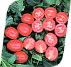 Семена томата Фуззер F1 1000 семян Seminis