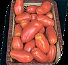Семена томата Хердон F1 1000 семян Seminis