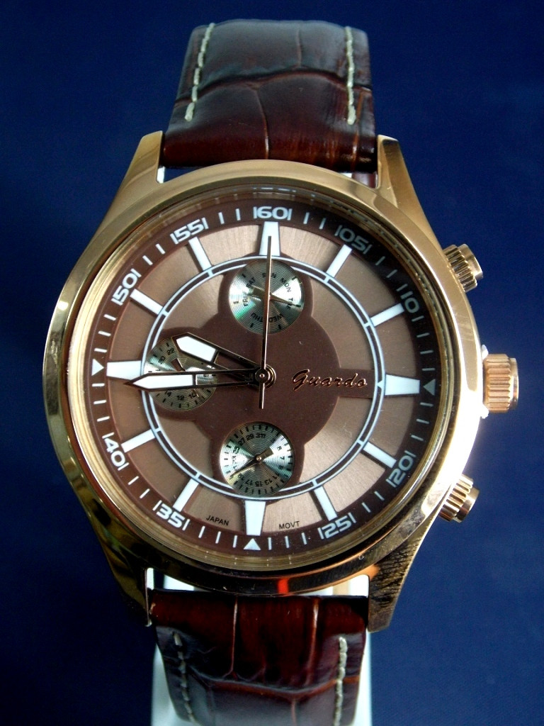 Наручний годинник Guardo SOO541A BR