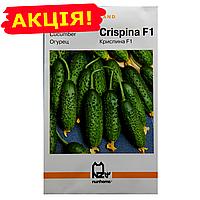 Огурцы Криспина F1 (Holland) семена, большой пакет 5г
