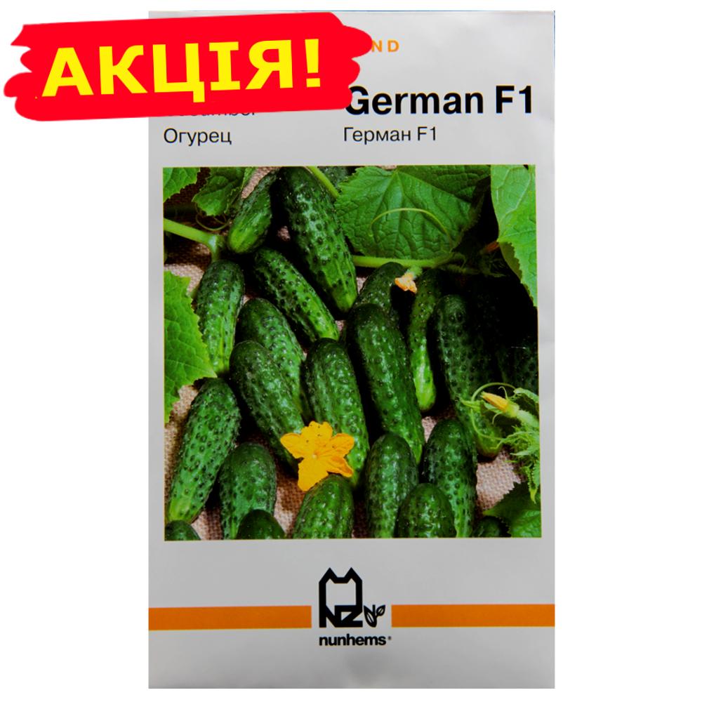 Семена Огурцы Герман F1 Holland большой пакет 3 г