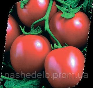 Семена томата Перфектпил F1 25000 семян Seminis