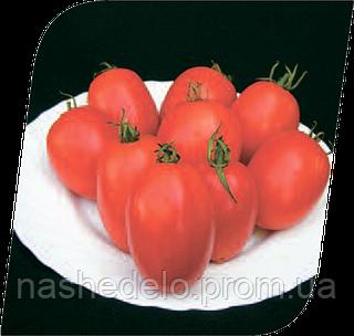 Семена томата Везол F1 1000 семян Seminis