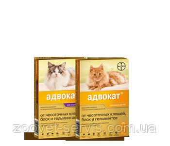 Капли на холку для кошек до 4 кг Адвокатот чесоточных клещей, блох и гельминтов