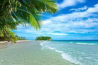 """Шпалери паперові """"Острів і пальми"""""""