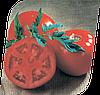 Семена томата Санрайз F1 1000 семян Seminis