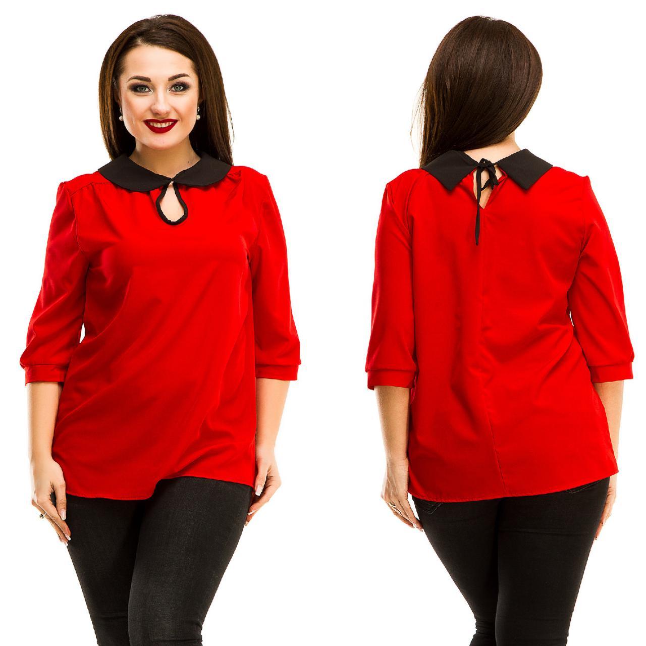 """Стильная женская блуза """"NINELLE"""" с контрастным воротничком (большие размеры)"""