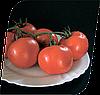 Семена томата Энигма F1 500 семян Seminis