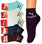 Новое поступление женских и мужских брендовых носков!