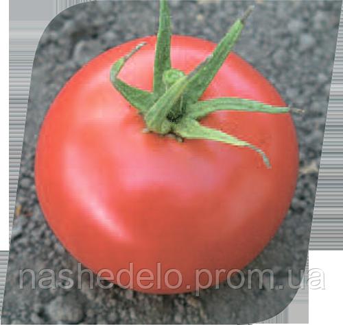 Хиларио Ф1 500 сем. томат Семенис