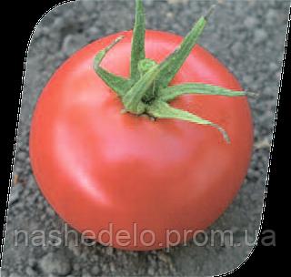 Семена томата Хиларио F1 500 семян Seminis
