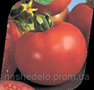 Семена томата Марисса F1 500 семян Seminis