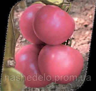 Семена томата Пинк Уникум F1 500 семян Seminis