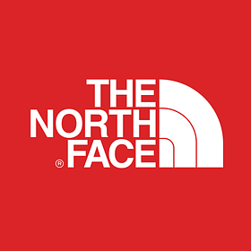 Мужские кроссовки North Face