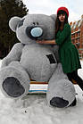 """Плюшевый мишка """"Тедди"""", серый, 250 см."""