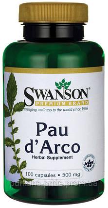 Кора муравьиного дерева, По Дарко, Swanson Pau D'Arco  500 мг 100 капсул, фото 2